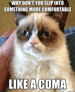 49610-Grumpy-cat-why-dont-you-slip-i-OQ0l